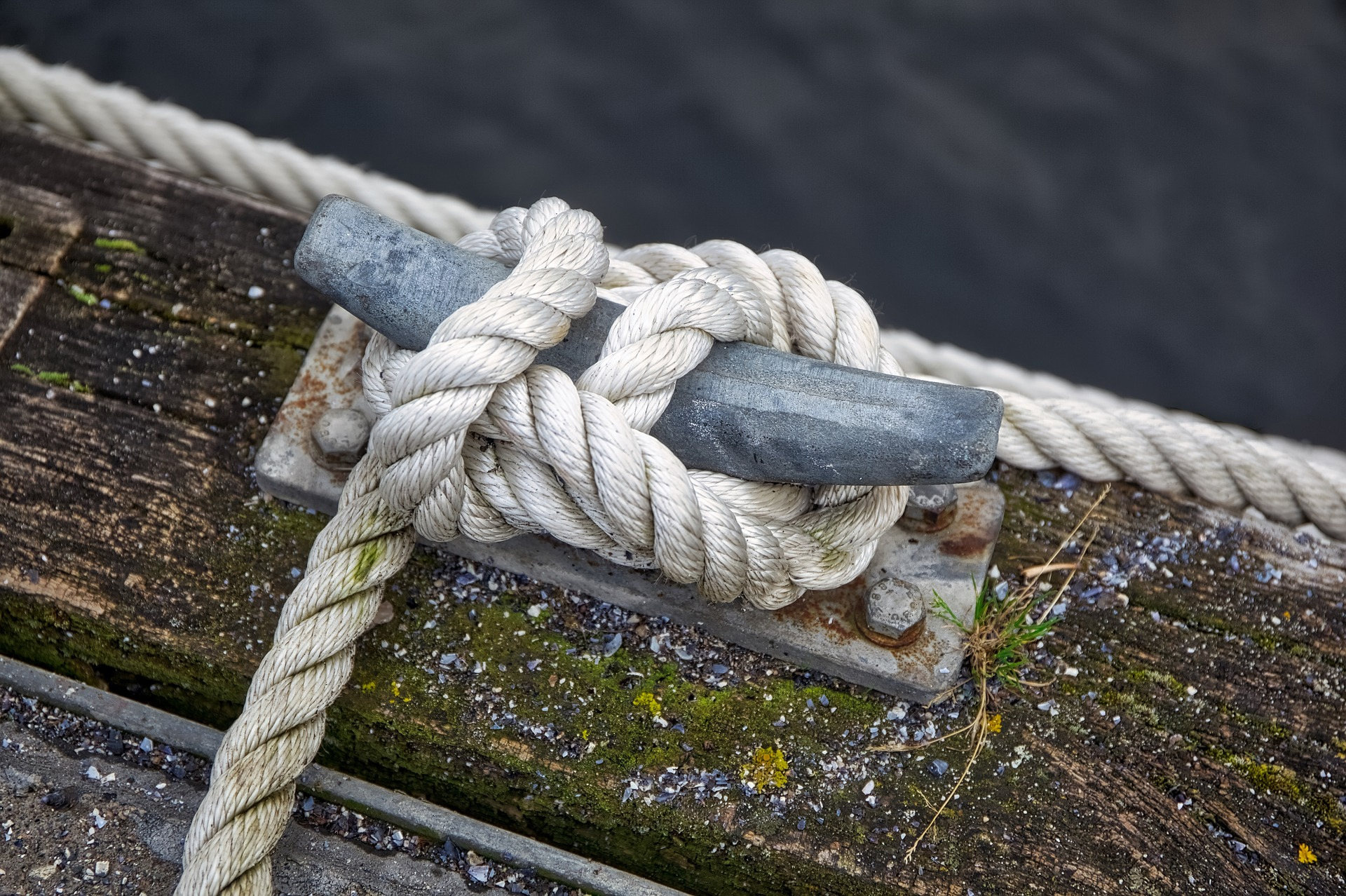A knot used on a ship dock.